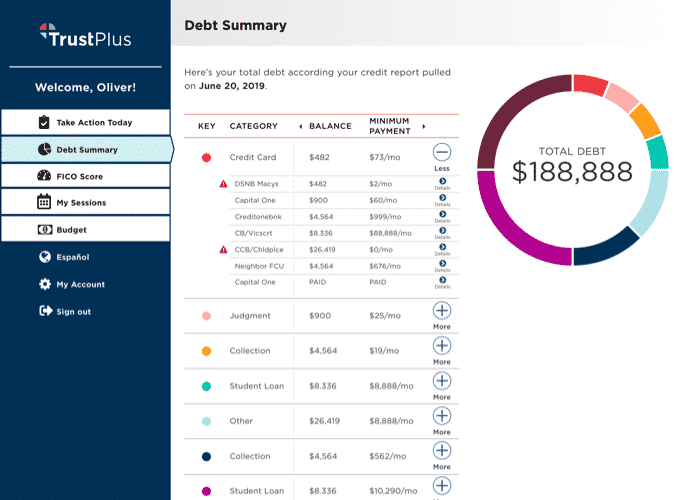 TrustPlus Debt Summary